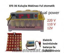 EFE 36 lık Kuluçka Makinesi Multi fonksiyonel viyol lu