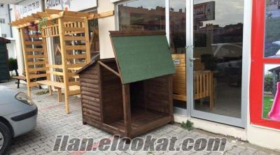 Çatısı Açılır Verandalı Köpek Kulubesi