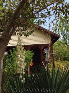 Köyceğizde sahibinden satılık ahşap köy evi