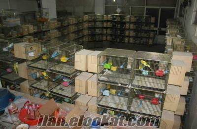 Bornovada üretim kafesleri