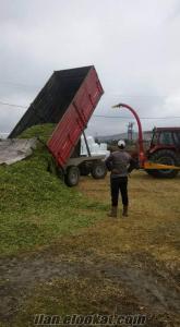 350 kg paketli mısır