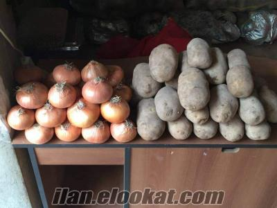 satılık kumbirlik patates kelle soğan
