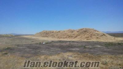 satılık temiz topraksız arpa buğday samanı 300 ton