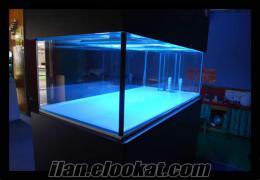Akvaryum mersin 150cm Deniz Akvaryumu