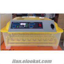 EFE 48 yumurta kapasiteli kuluçka makinesi
