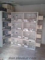 satılık muhabbet kuşu kafes üretimhanesi