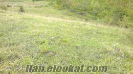 bartında sahibinden satılık arazi