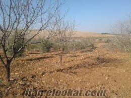 gaziantep günbulur köyünde satlık arazi