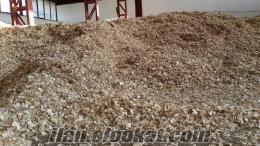 Satılık altlık çam talaşı