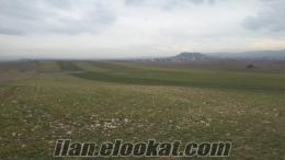 Ankara temelli