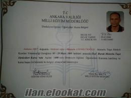 Ankara direksiyon hocası