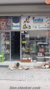 ACİL!DEVREN SATILIK PET SHOP