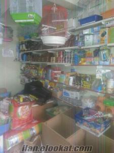 Devren satılık petshop