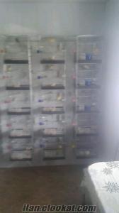 balıkesir gönenden satılık çok temiz kafesler