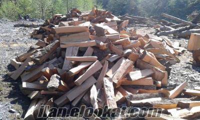 artvin fırınlık odun