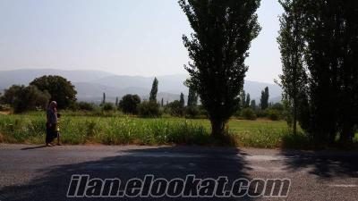 Aydın Nazilli - Bozdoğan arası yol üzeri satılık tarla