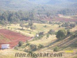 çiflik yapımına hayvancılıga tarıma dag evi yapımına yazlık yapımına cok uygun