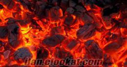 Bornovada meşe kömürü