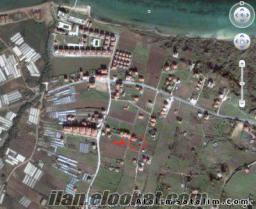 Çınarcık yolu üzeri Koruköy yakını 365 m2 acil satılık arsa