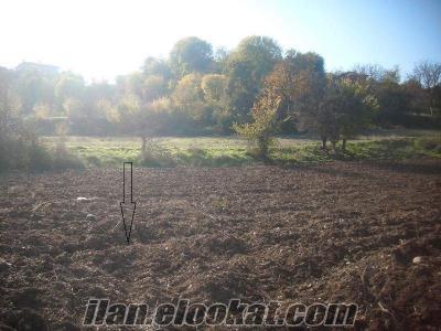 Bilecik gölpazarı arıcaklarda 1465 m2 köy civarı tarla