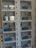 PVC KAFES AZ KULLANILMIŞ