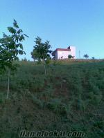 k.maraş bağ bahçe çiflik ev satılıktır 130 tl