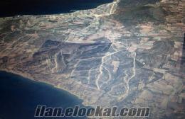 Cesme-Musallada Sahibinden Satilik Tarla 1000m