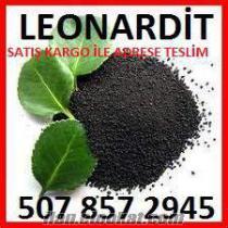 leonardit, toz kömür, fındık kömür