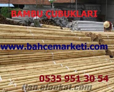 Bambu Nasıl Yapılır, Bambu Ekodoga, Bambu Nedir, Bambu Çubuğu Fiyat Listesi