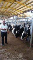 Serkan Et tarım Hayvancılık
