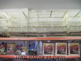 Bursada salma kuş kafesle