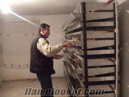 Balıkesirde ŞOK FİYATLARA sahibinden satılık bıldırcın kafesi