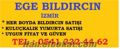 İzmir bıldırcın satışı