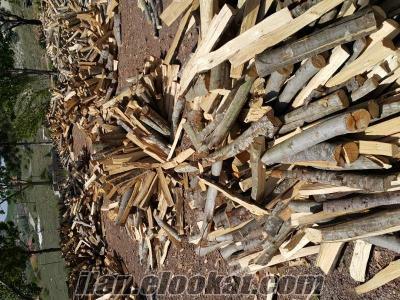 ankara da firinlik sominelik odun