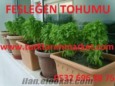 Fesleğen tohumu, Fesleğen tohumu fiyatı, Fesleğen tohumu fiyatları, Fesleğen