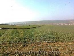 Marmara Ereğlide peşinatsız arsa