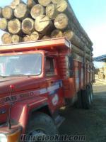 Sinop Ayancıkda satılık as950