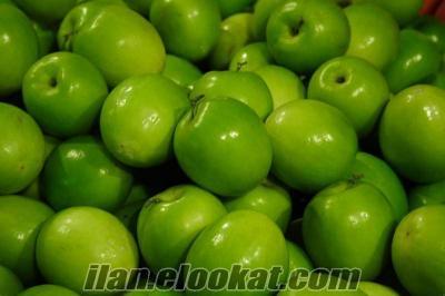 granyy smith elma satılık
