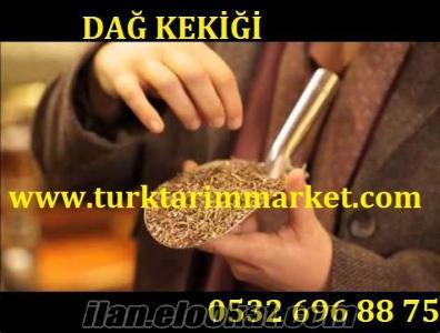 Ankara Pursaklar dağ kekiği