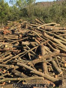 Edremit meşe odunu