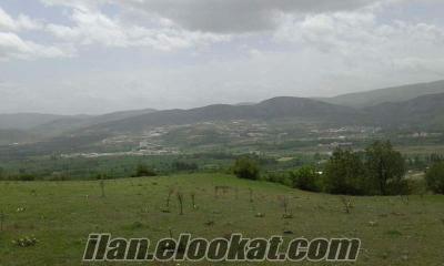 tokat kömeç köyü satılık arazi