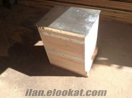 Samsun Termede arı kovanı