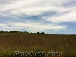 kadıköyde satılık arsa yerleşim alannına yakın etrafında çiftlikler var