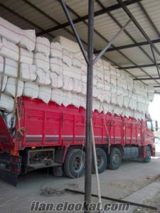 samsun saman sahıl saman ordu satılık saman 2015 yenı sezon saman sınırsız saman