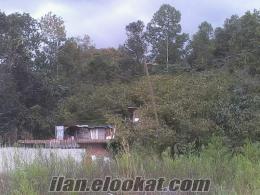 TRABZON incesu köyü satılık arsa
