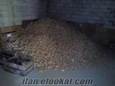 Agira patates açıklamayı okuyun !!!