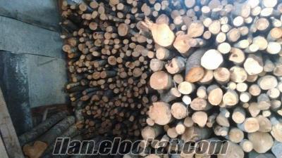 Meşe ve gürgen odunu fırınlık şöminelik mevcuttur
