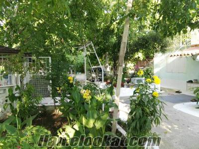 izmir/tire zeytinlik satılık, 23880 m2