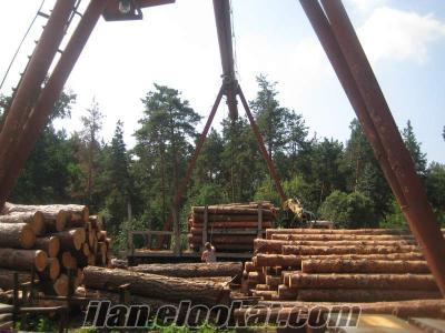 inşaatlık kereste ve tahta