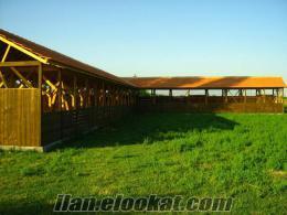 Aydında Daire Fiyatına Satılık Çiftlik